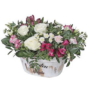 Мечта +30% цветов с доставкой в Ивантеевке