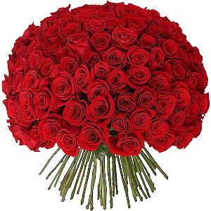 Букет из 101 красной розы с доставкой в Ивантеевке